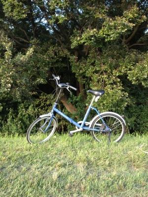 20 year old bike